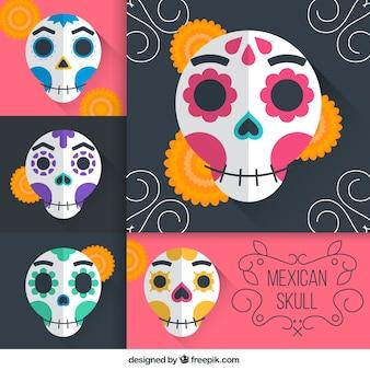 Variedad de cráneos mexicanos