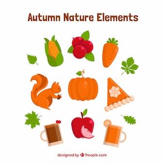 Variedad de elementos de naturaleza en otoño