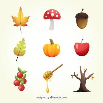 Variedad de elementos naturales de otoño