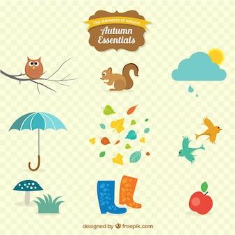 Variedad de esenciales de otoño