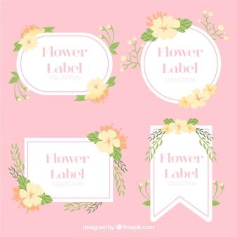 Variedad de etiquetas florales en colores pastel