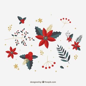 Variedad de flores rojas de invierno