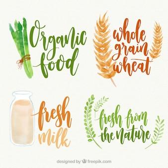 Variedad de pegatinas de comida orgánica de acuarela