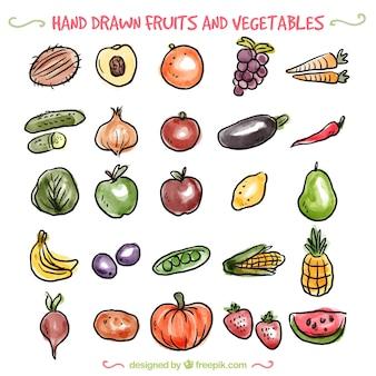 Variedad de verduras dibujadas a mano y frutas