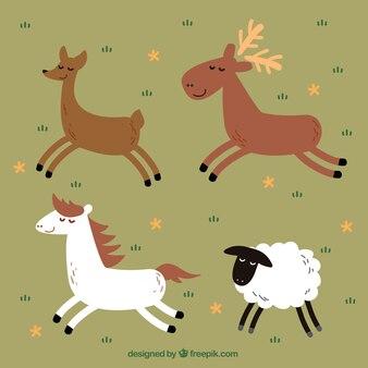 Varios animales decorativos dibujados a mano