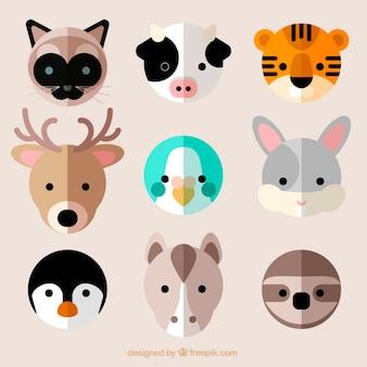 Varios avatares de simpáticos animales planos