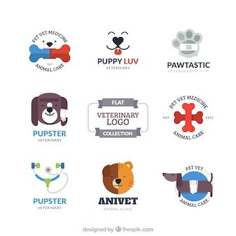 Varios logos de veterinario en estilo plano