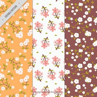 Varios patrones de flores de cerezo en estilo vintage