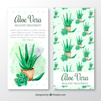 Aquarell Aloe Vera Behandlung Broschüre