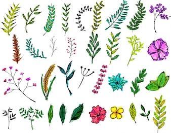 Aquarell Blumenpaket
