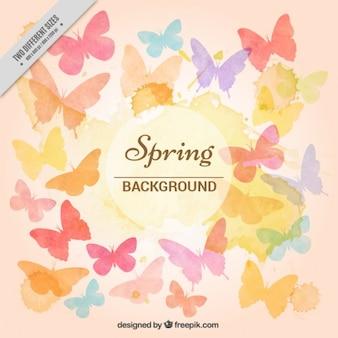 Aquarell farbige Schmetterlinge Hintergrund