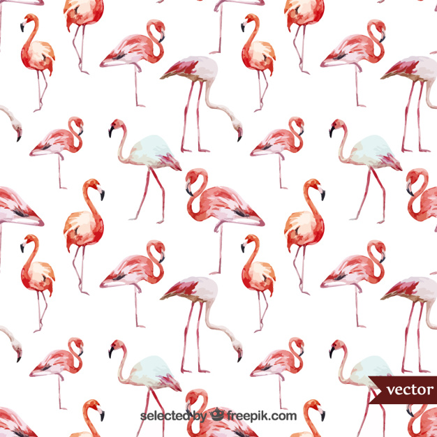Aquarell Flamingos