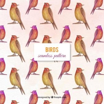 Aquarell Vögel Muster