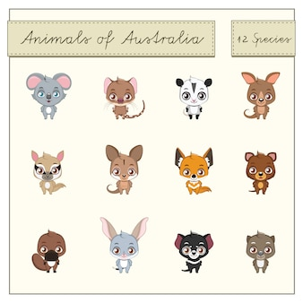 Australian animals collection