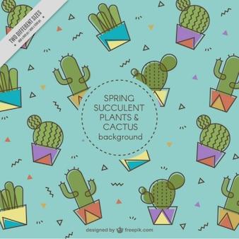 Cacti Hintergrund in flaches Design
