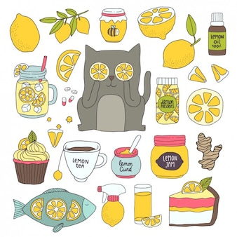 Differents Zitrone Anwendungen