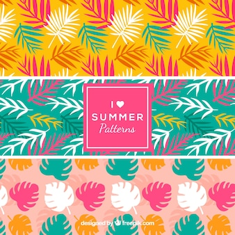 Drei Sommermuster mit farbigen Blättern