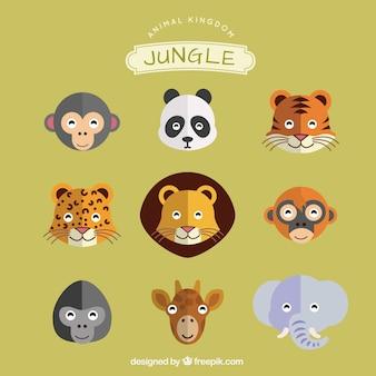 Dschungel-Tiere-Satz
