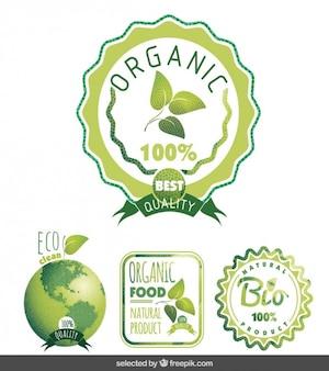 Eco Abzeichen in der grünen Farbe