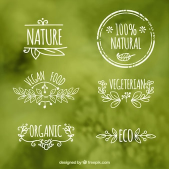 Ecologic Etiketten von Lebensmitteln