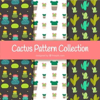 Elegante Kaktus-Muster-Sammlung