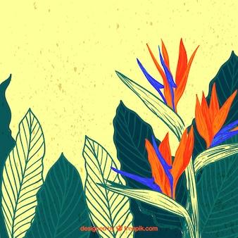 Elegante Wasserfarbe tropischen Blumenhintergrund