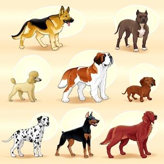 Farbige Hunde-Sammlung