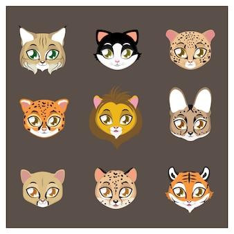 Felines Tiere Sammlung