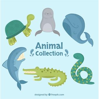 Flache Sammlung von Seetieren