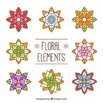 Geometrische florale Ornamente