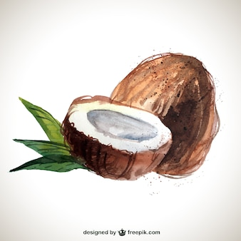 Hand bemalt Kokos