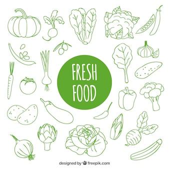 Hand gezeichnet frische Lebensmittel