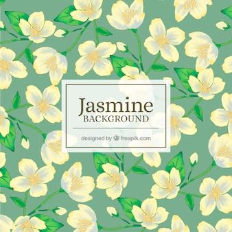 Hand gezeichnet Jasmin Hintergrund