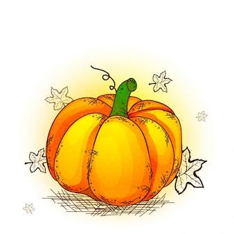 Hand gezeichnet Kürbis für Thanksgiving Day Feier.