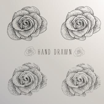 Hand gezeichnete Rosen Sammlung