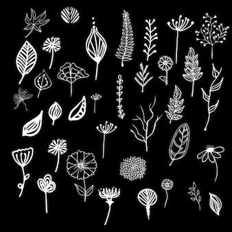 Hand gezeichnete Zweige Sammlung