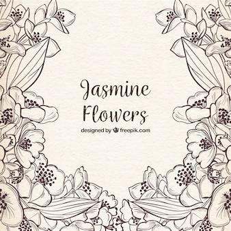 Handgezeichnete Jasminblüten mit skizzenhaftem Stil