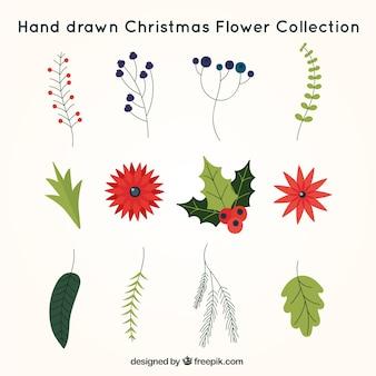 Handgezeichnete Pack Weihnachtsblumen