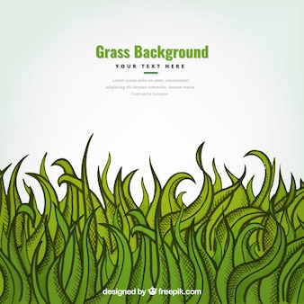 Handgezeichneten Hintergrund der dekorativen grünen Gras