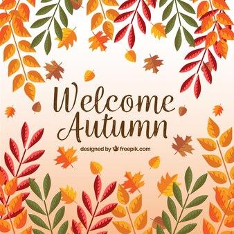 Herbst farbige Blätter Hintergrund