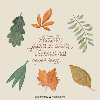 Herbstfarben in den Farben, hat Sommer noch nie gesehen
