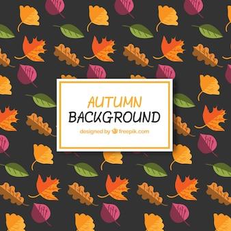 Hintergrund der bunten Herbstlaub