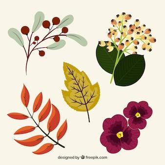 Hübsche handgezeichnete Blumen und Vintage Pflanzen