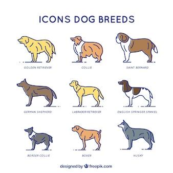 Dog Breed Symbolism