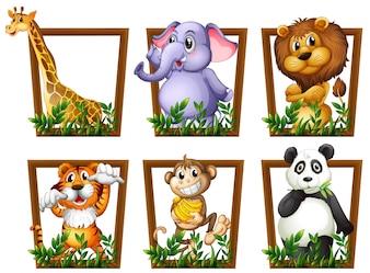 Illustration von vielen Tieren in einem Holzrahmen