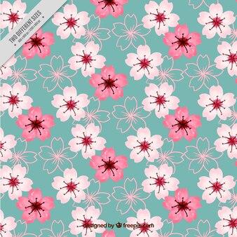 Jahrgang Aquarell Kirschblüten Hintergrund