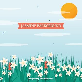 Landschaft Hintergrund mit hübschen Jasmin