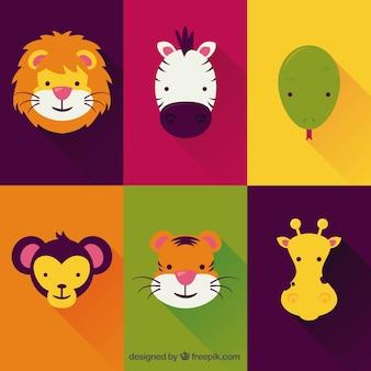 Nette Tiere