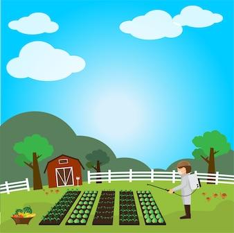Obst und Gemüse Garten