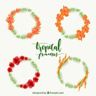 Packung mit floralen dekorativen Rahmen
